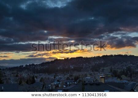 tramonto · suburbana · quartiere · case · settentrionale · americano - foto d'archivio © davidgn