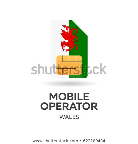 Wales mobile operator. SIM card with flag. Vector illustration. Stock photo © Leo_Edition
