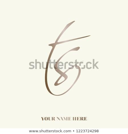 T betű luxus logoterv esküvő felirat retro Stock fotó © SArts