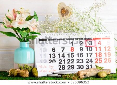 Giorno scrittore calendario vacanze stile moderno Foto d'archivio © Olena