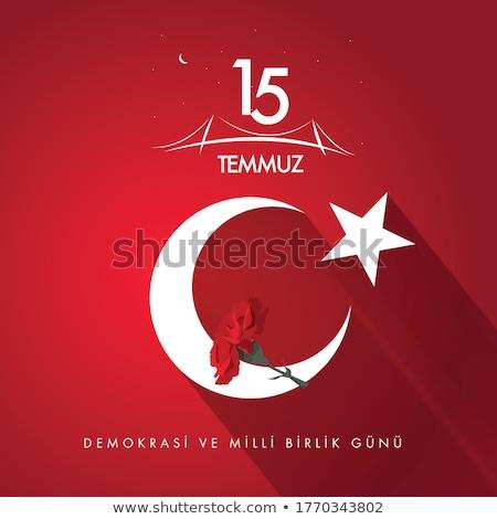 Grafisch ontwerp symbool poging Turkije vlag aanval Stockfoto © FoxysGraphic