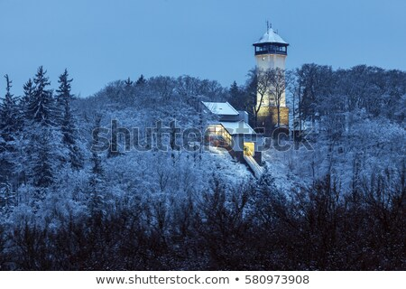 Diana Tower in Karlovy Vary Stock photo © benkrut