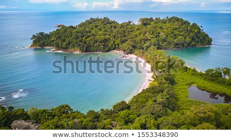 Spiaggia Costarica sabbia alberi foresta panorama Foto d'archivio © Juhku