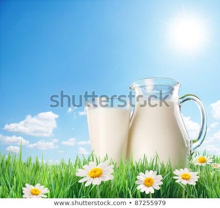 緑 · 緑の草 · 空 · 花 · 草 · 太陽 - ストックフォト © adamson