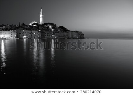 town of rovinj black and white view stock photo © xbrchx