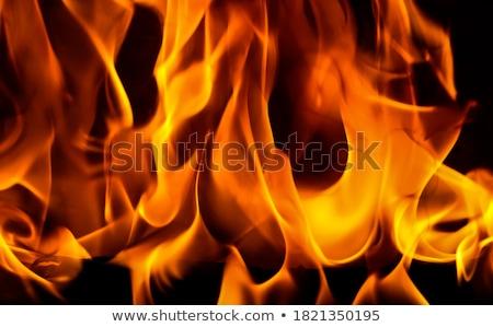 bright bonfire burning logs orange spurts of flame stock photo © marysan
