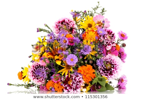 Beautiful bouquet of wild flowers with sunflower stock photo © ruslanshramko