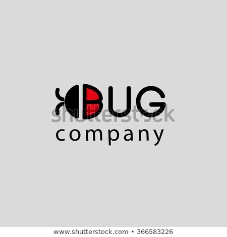 Kever bug logo symbool icon vector Stockfoto © blaskorizov