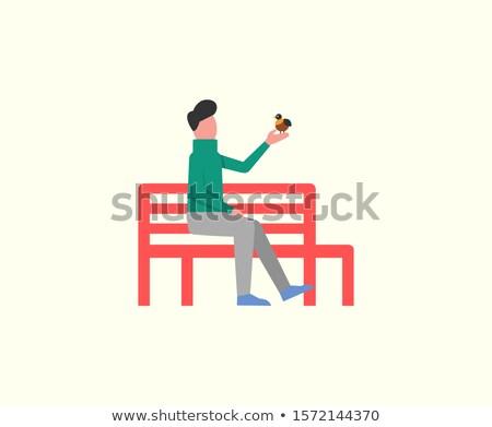 Man vergadering houten bank spelen vogeltje Stockfoto © robuart