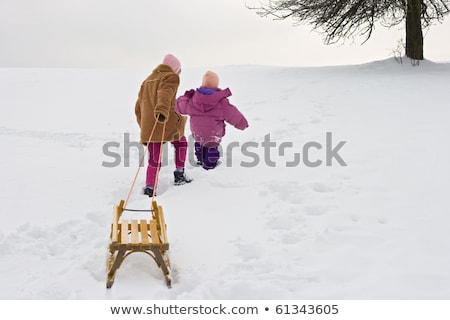 Gyerekek mászik hó domb tél gyermekkor Stock fotó © dolgachov