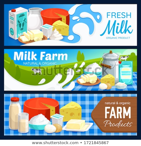 Dairy Products Milk and Cottage Cheese Vector Stock photo © robuart