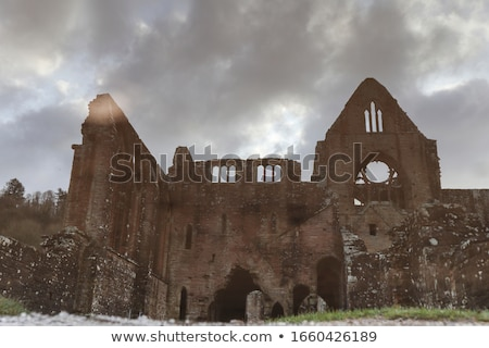 Bouwkundig ruines oude steen kolommen boog Stockfoto © jossdiim