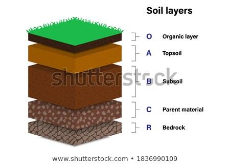 Diagrama diferente camadas solo ilustração Foto stock © bluering