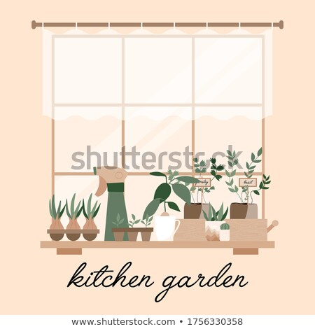Kitchen Interior, Window Sill with Plants Vector Stock photo © robuart