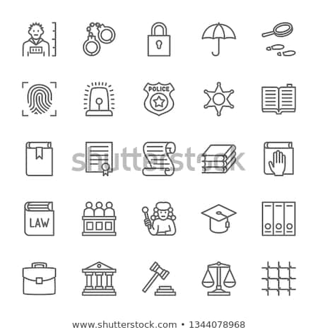law of justice icon vector outline illustration Stock photo © pikepicture