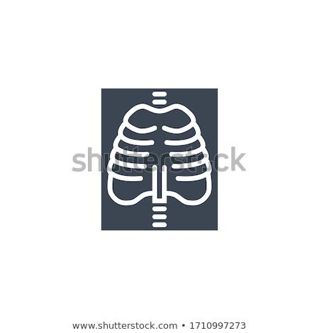 X-ray related vector glyph icon. Stock photo © smoki
