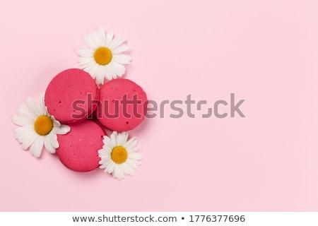 カモミール 花 クッキー カラフル パターン 花 ストックフォト © karandaev