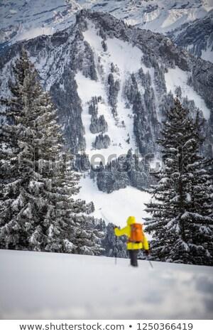 ходьбе альпийский пейзаж женщины снега горные Сток-фото © lightpoet
