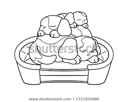 Cartoon slaperig hond kleurboek pagina zwart wit Stockfoto © izakowski