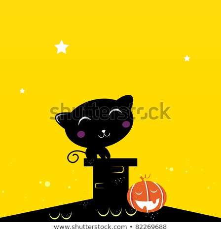 Black Halloween cat silhouette sitting on the roof during Night Stock photo © lordalea