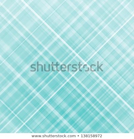 Wallace tartan background. EPS 8 Stock photo © beholdereye