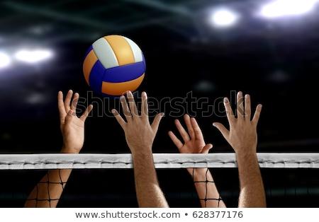 Volleyball détaillée silhouette vecteur format facile Photo stock © abdulsatarid