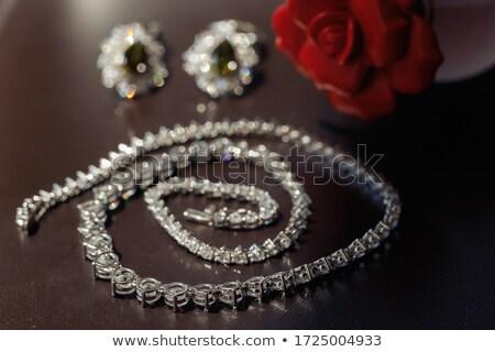 Ouro jóias brincos vermelho marrom pedras Foto stock © vlaru
