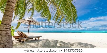 an empty beach scene in hawaii Stock photo © 808isgreat