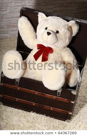 cute teddy bear with a big christmas gift box stock photo © balasoiu