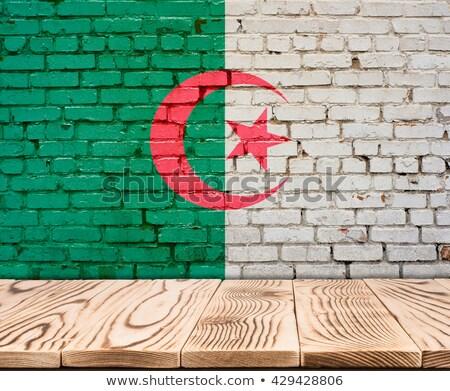 Bandeira Argélia parede de tijolos pintado grunge textura Foto stock © creisinger