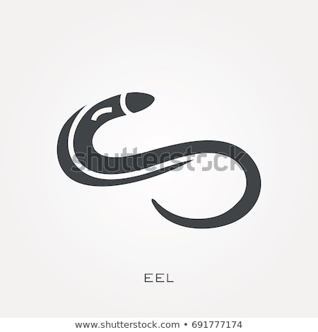 Silhouette of eel stock photo © perysty