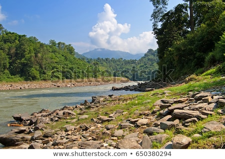 river in sun koshi, nepal Stock photo © gewoldi