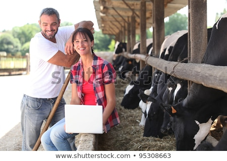 Agricoltore bovini laptop campo farm latte Foto d'archivio © photography33