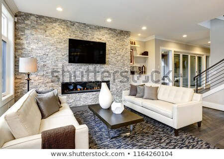 Open modern luxury home interior living room and stone fireplace. Stock photo © iriana88w