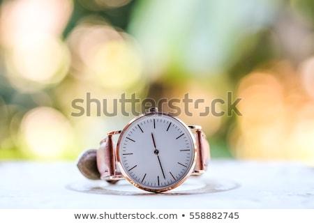 mens classic steel wrist watch timer isolated stock photo © ozaiachin