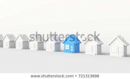 One Blue Home Among Many White Houses Stock photo © iqoncept