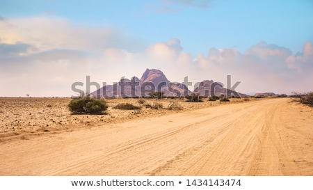 Desert Vista on dirt road Stock photo © emattil