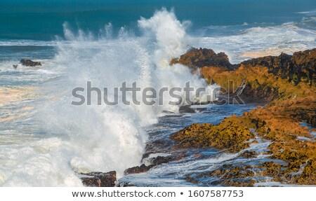 mavi · fırtına · deniz · gök · gürültüsü · gökyüzü · ışık - stok fotoğraf © mike_expert