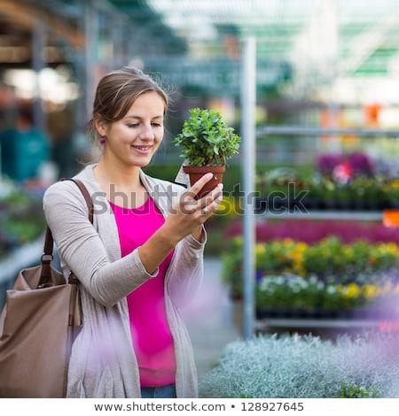 florista · mujer · elegir · flores · jardín · tienda - foto stock © dashapetrenko