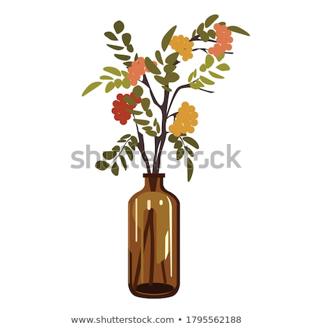 yellow leaves in vase Stock photo © taden