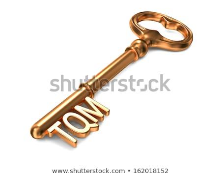 TQM - Golden Key. Business Concept. Stock photo © tashatuvango