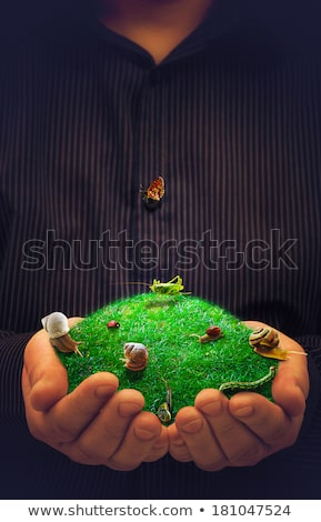 spring conceptual artwork animals meadow male hands stock photo © fotoaloja