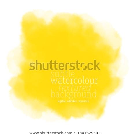 Fruit gekleurd verf vierkante achtergronden ingesteld Stockfoto © RudyardMace