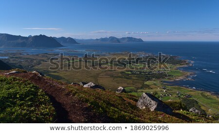 Path in coastline meadow Stock photo © smithore