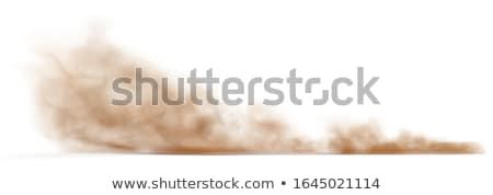 pyłu · bunny · w · górę · miotła · domu - zdjęcia stock © stocksnapper