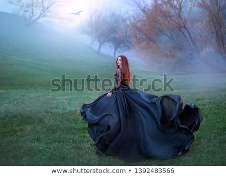 вампир · Принцесса · лице · Sexy · моде · модель - Сток-фото © gsermek