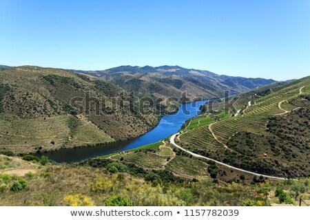 manzara · fotoğraf · görmek · güzel · liman · şarap - stok fotoğraf © ajn