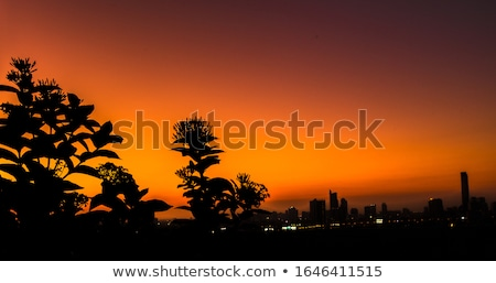 View of Singapore during bright day Stock photo © Elnur
