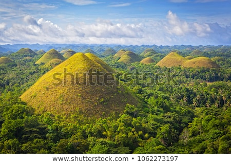 Beautiful Chocolate Hills in Bohol, Philippines Stock photo © tommyandone