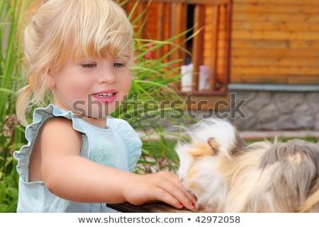 gyermek · tengerimalac · portré · nevet · kislány · fehér - stock fotó © paha_l